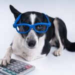 MJM Income Tax's Under-Utilized Pet Tax Deductions